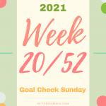 2021: Week 20/52 – Goal Check Sunday. Petite Phoenix.